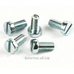 The M6 screw for installation of equipmen