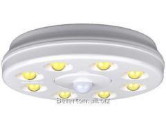 Lamp of a directional light Down light Cap