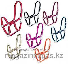The Tattini Capezza halter is two-color. art.