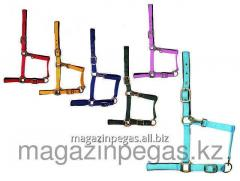 Halter nylon with a substrate. art. 2001003