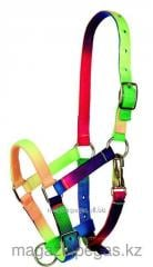 Halter color