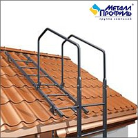 Roofing ladder with accessories