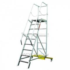 Ladder with a platform