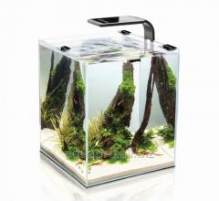 Nano aquarium of SHRIMP SET SMART10 of l.