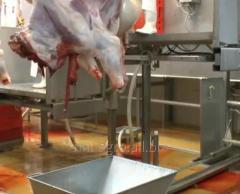Мясоперерабатывающее оборудование Нутровка 1