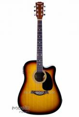 Electroacoustic guitars