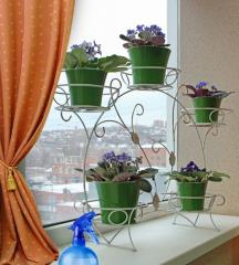Shod flower stands