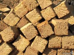 Blocks from a shell rock in Kazakhstan, Building