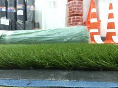 Artificial grass, lawn.