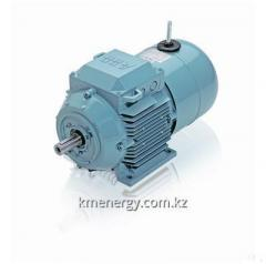 Low-voltage asynchronous electric motors with the