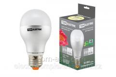 Лампа LED Груша - 6 Вт - 220 В - 3000 К – E27 TDM