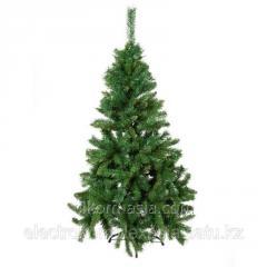 Fir-tree of GM S 626/5 150 of cm