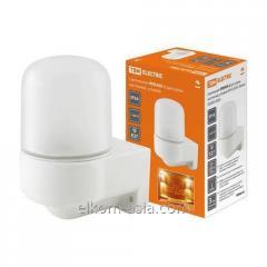 The TDM NPB 400 Lamp is white. for a sauna angular