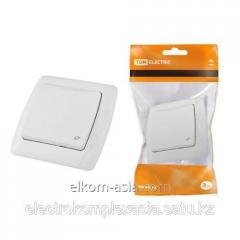 The TDM Socket with a cover 2P+Z 16A 250B white