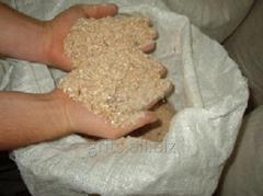 Muchka is barley