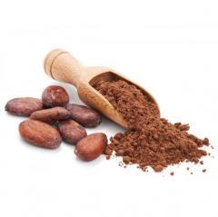 Cocoa powder red alkalizirovanny 10-12% (PV6R)