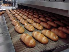 Оборудование для хлебопекарной промышленности