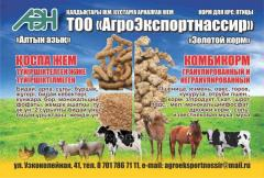 Compound feed for animals