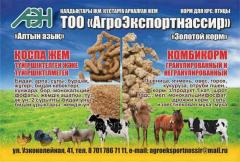 Dry feed for animals