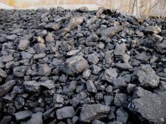 Coal of Northern Kazakhstan