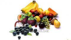 Plaster JSC - Antioxidant