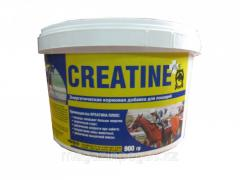 CREATINE plus (Creatine plus) art. 690238