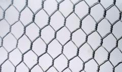 Сетка крученая низкоуглеродистая ГОСТ 13603-89 25 0.60 1000