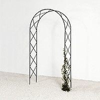 ARCH for plants No. 2
