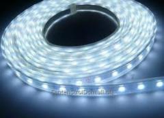 LED tapes