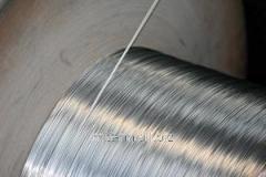 Проволока алюминиевая 5,5 для холодной высадки, по ГОСТу 14838-78, марка АМг5П