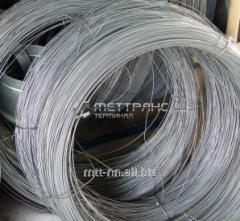 Polygraphic wire