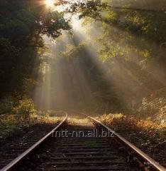 Рельсы железнодорожные Р24, ГОСТ 6368-82, 5876-82,