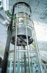 Capsular elevators