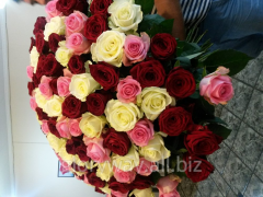 The mixed bouquet from three grades of roses