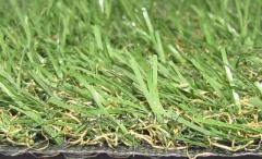 Искусственная трава для газона Ample PX2