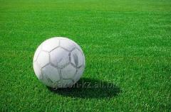 Coverings for football fields