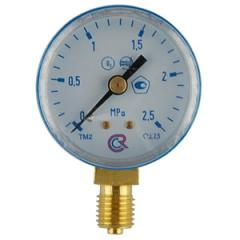 Manometers of 25 kgfs / sm.kv. (2,5)