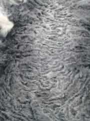 Astrakhan fur