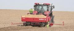 Plantadoras de patatas
