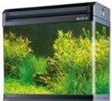 Aquarium of BOYU EA-60E firm (600*400*488mm) 99 l