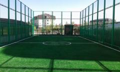 Artificial sport coverages