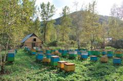 Production of beekeeping
