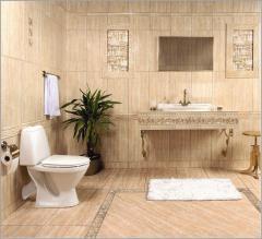 Tiles for toilet