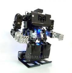 Конструктор - робот RQ HUNO