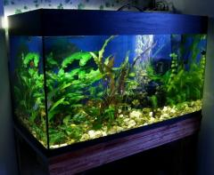 Glass for aquariums