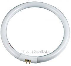 Запасная лампа к лампа лупе FSL22D / 22W №64031