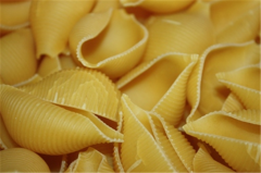 Cockleshell pasta
