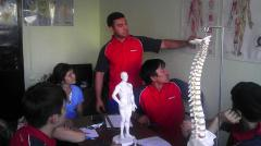 Services of professional massage therapists