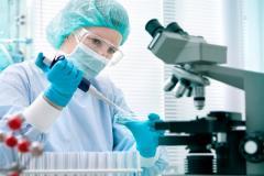 Поставка эмбрионов КРС молочного и мясного