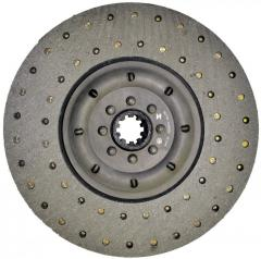 The clutch plate conducted 14.1601130 Tyumen